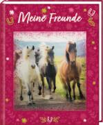 Freundebuch: Pferdefreunde - Meine Freunde (mit 3-D-Bild)